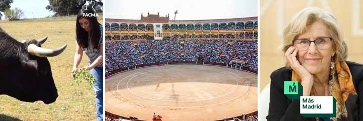 La magistral 'cornada' de la Feria de San Isidro a PACMA y a Carmena: en menos de 24 horas ya hay 11 corridas a punto de colgar el 'no hay billetes'