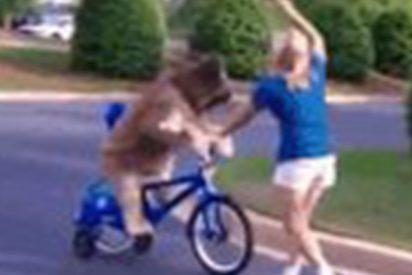 Este perro que monta en bici lo peta en las redes