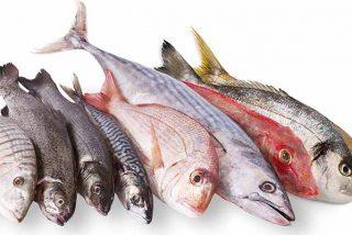 Estos son los pescados que debes comer si quieres vivir mucho y en forma