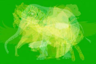 Test Visual: el primer animal que veas en esta imagen revelará secretos de tu personalidad