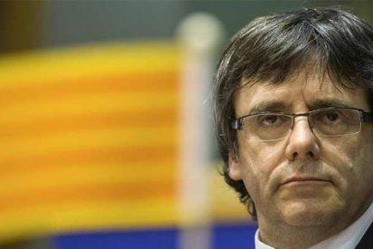 """El cobarde Puigdemont tuitea desde Bélgica que está """"al lado"""" de los condenados y le asan a la parrilla"""