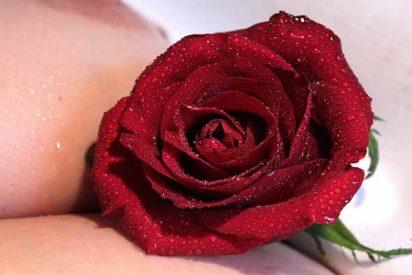 Hallan a una inmigrante ecuatoriana muerta, desnuda y con una rosa en el pecho, y buscan a su ex pareja por homicidio