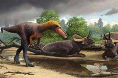 Suskityrannus hazelae, el nuevo pariente más pequeño del feroz Tyrannosaurus rex