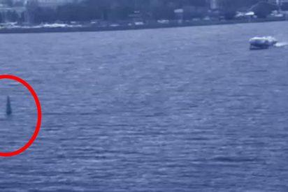 Este windsurfista profesional muere en San Petersburgo tras chocar contra un barco hidroala