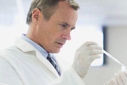 Un estudio evidencia que cualquier célula del intestino puede convertirse en células madre