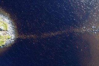 Encuentran en Escocia esta isla artificial más antigua que Stonehenge