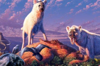 Fósiles indican que las hienas vivían ya en el Ártico hace 1.4 millones de años