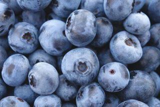 Pacientes con síndrome metabólico mejoran gracias al consumo de arándanos