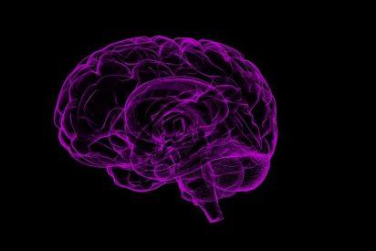 Detectan el alzheimer con un nuevo biomarcador de imágen