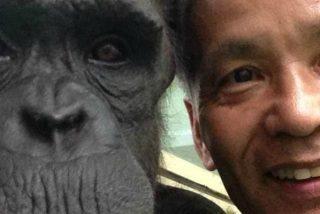 Humanos y chimpancés, casi casi, la misma criatura