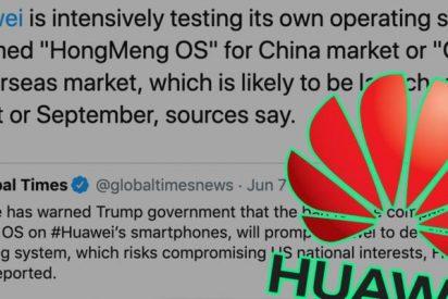 El nuevo sistema operativo de Huawuei se llama Oak Os y llegará a las tiendas con el Mate 30 en octubre