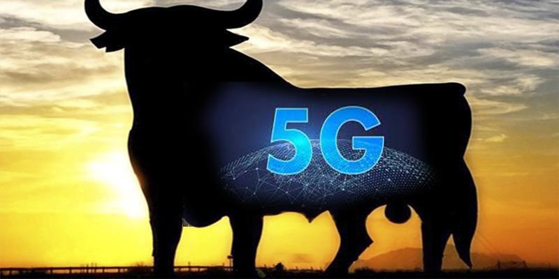 La expansión de la tecnología 5G está provocando una feroz batalla geopolítica