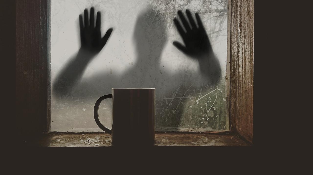 Ladrones: 9 consejos para evitar que te roben en casa