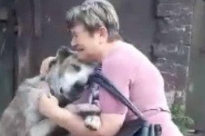 Este perro y esta anciana tienen un emotivo reencuentro después de años sin verse