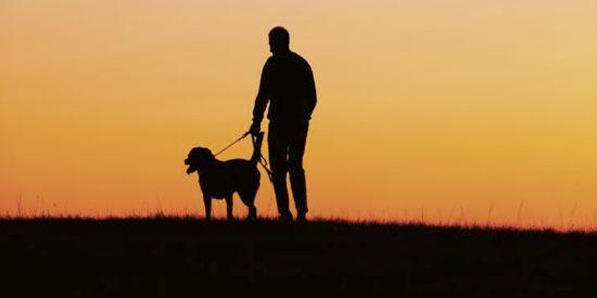 ¿Por qué perder a un perro puede ser más duro que perder a un familiar o a un amigo?