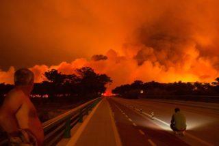 Portugal lucha contra un feroz incendio que ya ha arrasado 8.500 hectáreas y ha causado 30 heridos