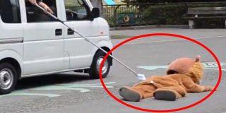 Disfrazan a este tipo de león en Japón para ensayar una captura y la reacción de los felinos no tiene precio