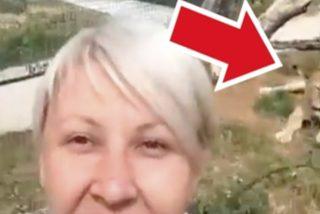 Esta mujer se mete en una jaula de leones para sacarse un selfie y pasa lo que tiene que pasar