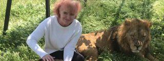 Estos dos leones de Crimea se dejan acariciar por una turista como si fueran gatitos