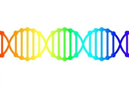 Por qué es importante la perspectiva 'queer' en la ciencia