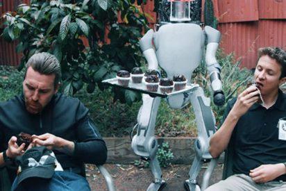 Esto es lo que pasa si maltratas a un 'robot humanoide' y se cansa de ti