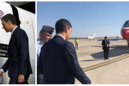 Sánchez estrena el AVE a Granada... y después, con toda la jeta, regresa a Madrid en su Falcon oficial