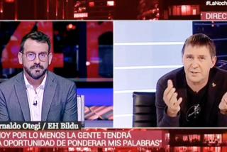 """El momento más infame de Otegi en TVE: """"Lo siento de corazón si hemos generado más dolor a las víctimas del necesario"""""""