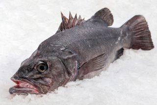 Las 5 claves para reconocer si un pescado es fresco