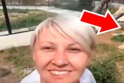 Selfie: la rubia se mete la jaula de los leones y no pasó lo que tenía que pasar