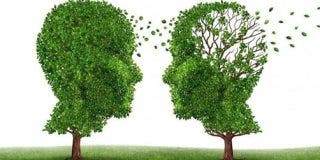 """La multinacional Pfizer ocultó un fármaco que previene el alzheimer: """"desarrollarlo era caro"""""""