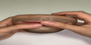 Así es el monedero con forma de boca humana que espanta a la Red