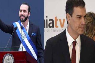 El zasca del presidente de El Salvador a enchufados de la izquierda que pone a temblar a Sánchez y a Begoña Gómez