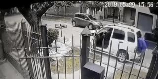 Estos dos perros dan una lección a unos ladrones armados que intentaban atracar a su amo