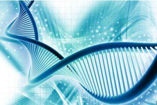 'Genome Research: nuevos puntos clave en la regulación de las infecciones virales crónicas