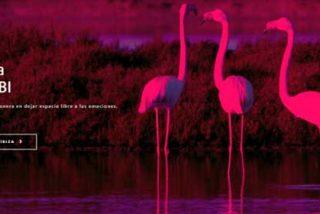 Turismo de Ibiza lanza una web enfocada al colectivo LGTBI