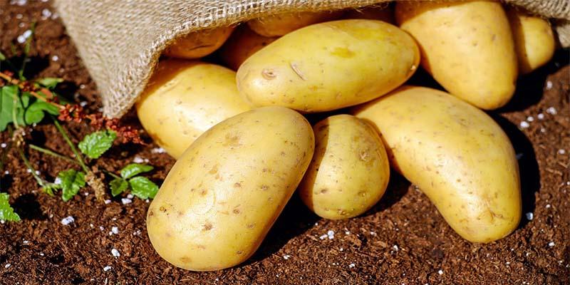 Patatas rellenas de queso y beicon