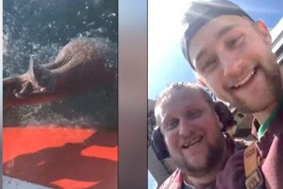 Dos descerebrados graban cómo le cortan la cola a un tiburón solo por diversión