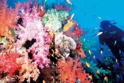 ¿Puedo practicar submarinismo en Egipto?
