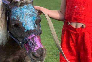 La ex modelo Delfina Blaquier se dedica ahora a pintar ponis con purpurina y las redes estallan