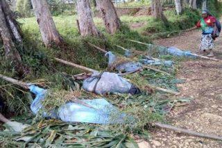 Matan a decenas de niños y mujeres por venganza en Nueva Guinea