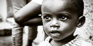"""La OMS declara como """"emergencia internacional"""" el actual brote de Ébola"""