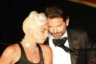 ¿Es Lady Gaga la culpable de la separación entre Bradley Cooper e Irina Shayk?