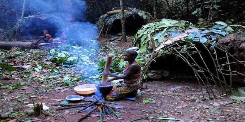 El truco de los pigmeos para encontrar el camino en lo profundo del bosque