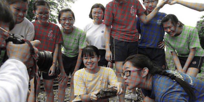 La ilusión óptica creada en esta imagen se hace viral en redes