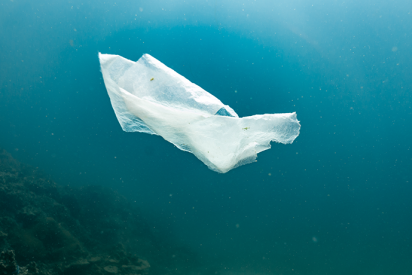 ¿Sabías que las bolsas de plástico 'biodegradables' a menudo no se rompen?