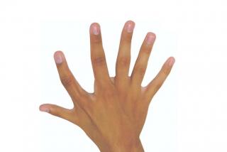 ¿Sabes por qué un sexto dedo podría ser muy útil?