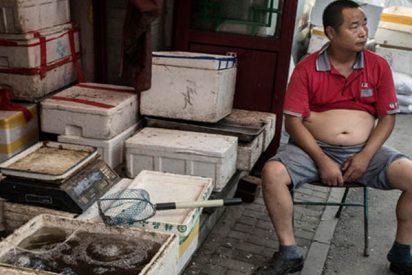 'Beijing Bikini': La policía china persigue la moda veraniega de la barriga al aire