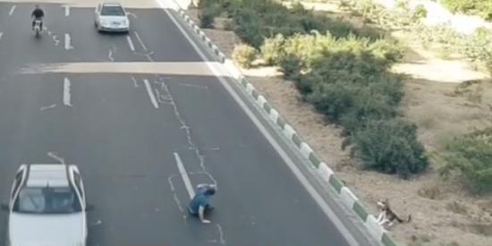 El vídeo que está arransando 'a toda velocidad' en La Red y te dejará con cara de bobo