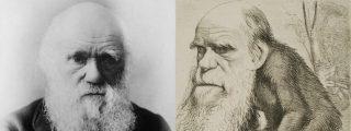 Teoría de la evolución de Darwin: por qué es incorrecto decir que 'descendemos del mono'