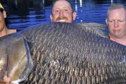 Este británico bate un récord mundial al pescar una carpa siamesa de 105 kilogramos